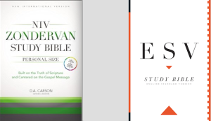 If you were looking for an eStudy Bible, what would look for?